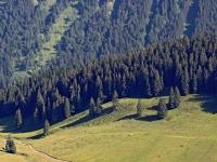 2015_07_10 Luftbild Alpen Allgaeu 15k2_10824